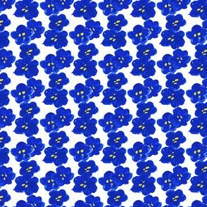 A Waterfall of Bluets