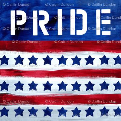 Rpatriotic_americana_flag_vi_preview