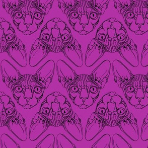 Sphynx lines fabric Purple