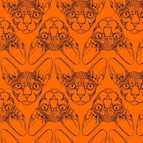 Sphynx lines fabric orange