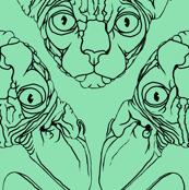 Sphynx lines fabric mint green