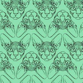 Sphynx lines fabric mint green