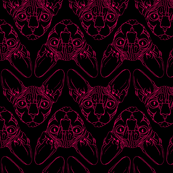 Sphynx lines fabric black & red