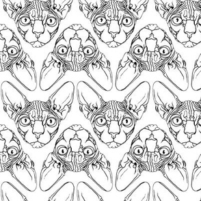 Sphynx lines fabric white & black