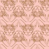 Sphynx lines fabric peach & brown