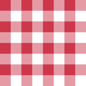 candy-cane red one-inch check