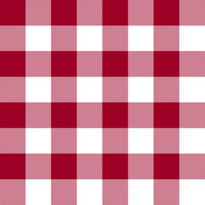 Cinnamon red and white one-inch gingham