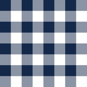 Navy and white one-inch check