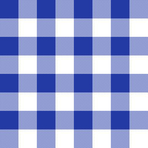 Morning blue one-inch gingham check