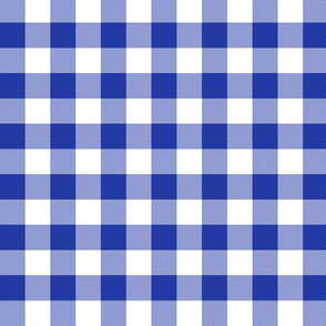"morning blue 5/8"" gingham"
