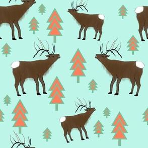 Elk in the Pine Trees