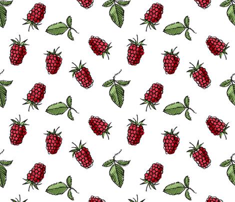raspberry and white wallpaper -#main