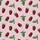 Raspberry, on pink