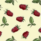 Raspberry, sideways on yellow