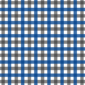 Blue and Charcoal Gingham