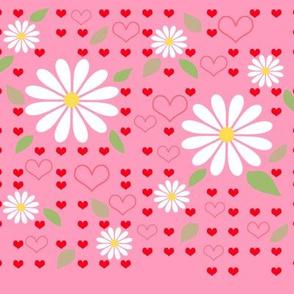 love & daisies