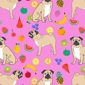 pugs pug dog dog cute pugs sweet tropical summer bright fruits for dog owners
