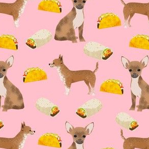 chihuahua dog pink chihuahua fabric with tacos mexican food burrito cute dogs best cute dog fabric for cute pets