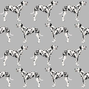 dalmatian dog cute dogs pet dogs grey dog fabric for pet owners dog lovers dog owners