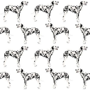 dalmatian dog dogs pet dog fabric black and white cute pets fabric for dog lovers dog owners