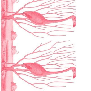 Pre-Linnean Flamingo Border Print ~  Royal Scandal
