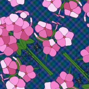 Rarachne_in_the_phlox_tile_shop_thumb
