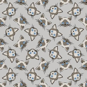 Siamese Cats on Gray