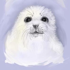 Baby Harp Seal Portrait