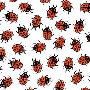 XL dot red ladybugs