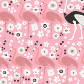 Rrflamingo_ostrich_shop_thumb