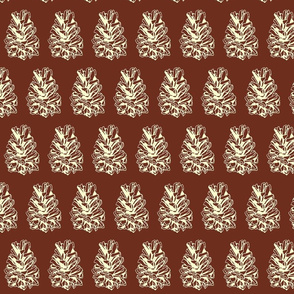 pine cone on terracotta