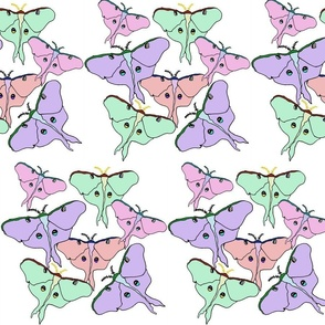 Rrrmoths_color_flattened2_shop_thumb