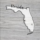 florida state pillow panel