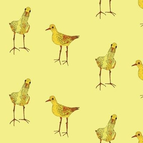 small yellow birds on yellow