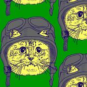Moto Kitty on Green