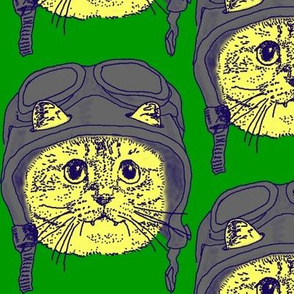 Moto Kitty on Green