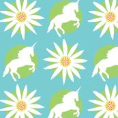Daisy Unicorn