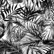 tropical palm leaves watercolor black