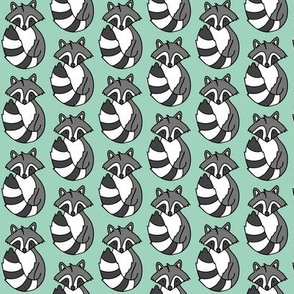 Raccoon // Mint background