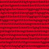 genome-04