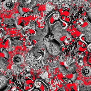 Haeckeliana Black and White on Red