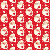 Santa Red ~ New small size! Christmas