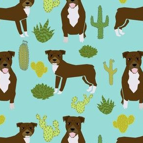 pitbull terrier cactus cute dog sweet dogs rescue mint dog