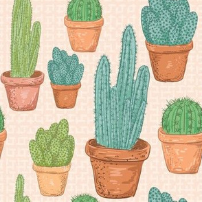 Sketchy Potted Cactus Collection