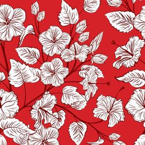 Botanical Hibiscus Plants
