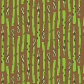 Asparagus Earth