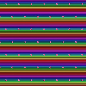 rainbow2 Mini