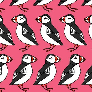 puffin// puffins birds bird pink girls pink nursery bird cute winter bird