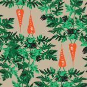 Carrots on tan