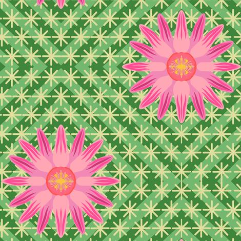 Hot Pink Log Cabin Cactus Flower